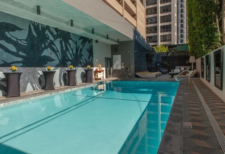 Kimpton Hotel Palomar Los Angeles Beverly Hills, Los Angeles, Havuz