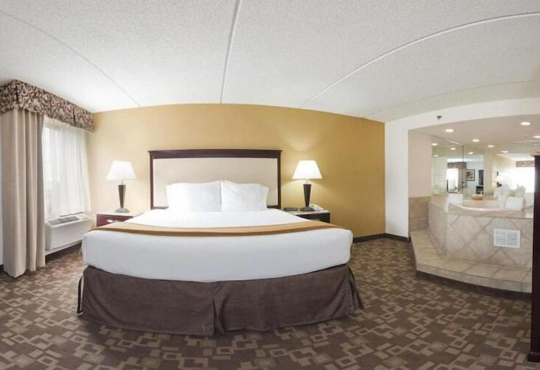 Holiday Inn Express Chicago - Schaumburg, Schaumburg, Chambre, 1 très grand lit, non-fumeurs (Leisure), Chambre