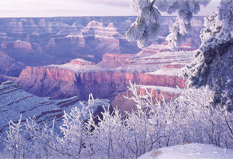 Holiday Inn Express Hotel & Suites Grand Canyon, an IHG Hotel, Grand Canyon, Chambre Standard, non-fumeurs, Chambre