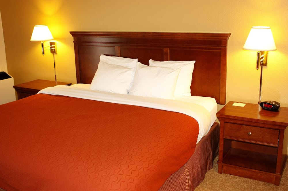 Room, 1 King Bed, Non Smoking (NonSmoking) - Guest Room