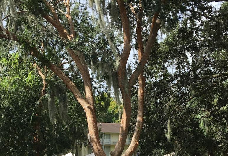 Days Inn by Wyndham Ocala West, Ocala, Utomhuspool