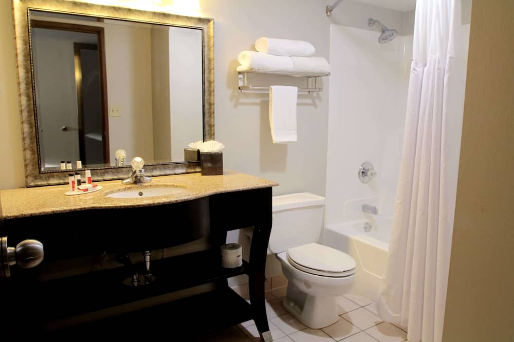 Suite, 1 spavaća soba, za nepušače - Kupaonica
