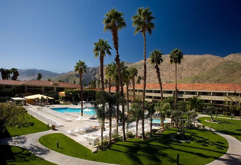 棕櫚泉希爾頓酒店, 棕泉市, 游泳池