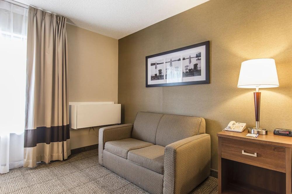 Standardna soba, 1 queen size krevet i kauč na rasklapanje, za nepušače - Soba za goste