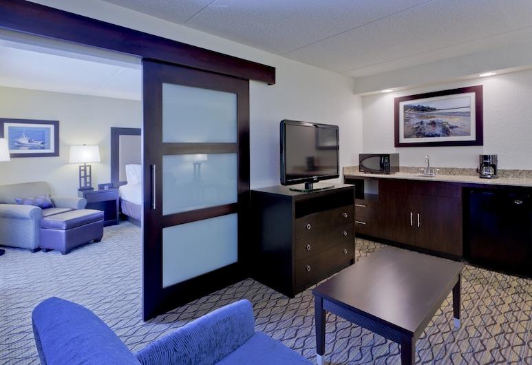 Holiday Inn Express Baltimore-BWI Airport West, an IHG Hotel, Hanover, Lakosztály, 1 king (extra méretű) franciaágy, nemdohányzó, Vendégszoba