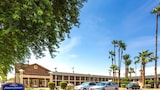 Choose This Cheap Hotel in Scottsdale