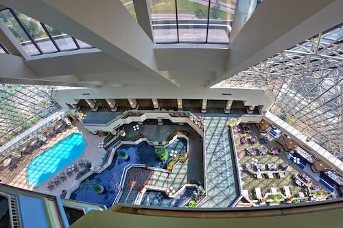 聖路易斯機場皇冠假日飯店/