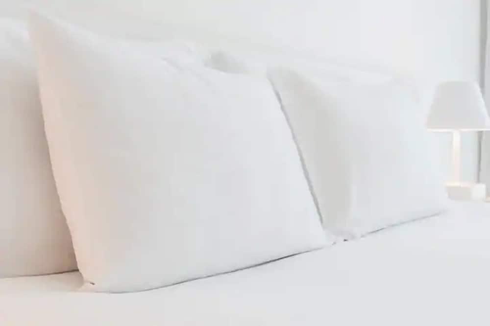 Standard tuba, 1 ülilai voodi ja diivanvoodi, erivajadustele kohandatud, vanniga (with Sofabed) - Tuba