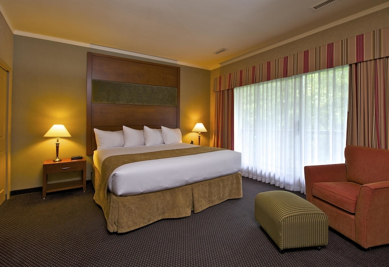 Coast Tsawwassen Inn, Delta, Suite (Coast King Suite), Habitación