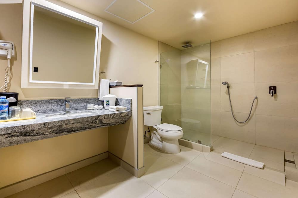 Accessible Room with 2 Queen Beds - 浴室