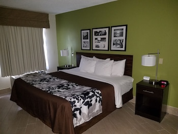 Choose This Cheap Hotel in Miramar Beach