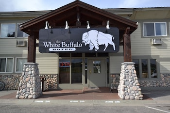 Bild vom White Buffalo in West Yellowstone
