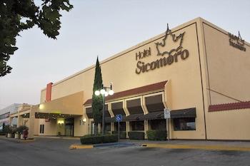 Selline näeb välja Hotel Sicomoro, Chihuahua