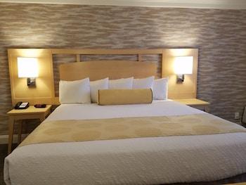Winston-Salem — zdjęcie hotelu Winston-Salem Hotel and Spa