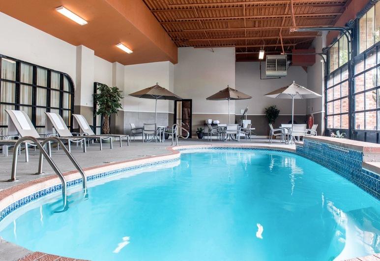 Quality Inn Festus, Festus, Pool