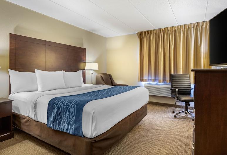 Comfort Inn Airport, Grand Rapidsas, Standartinio tipo kambarys, 1 labai didelė dvigulė lova, Nerūkantiesiems, Svečių kambarys