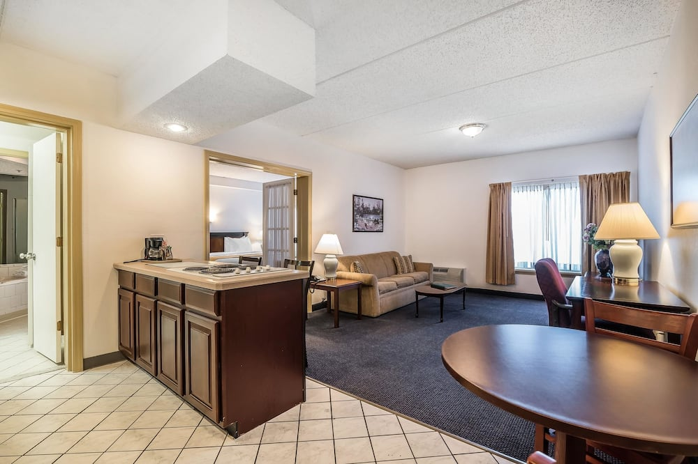 Studio Suite, 1 King Bed, Jetted Tub - Guest Room