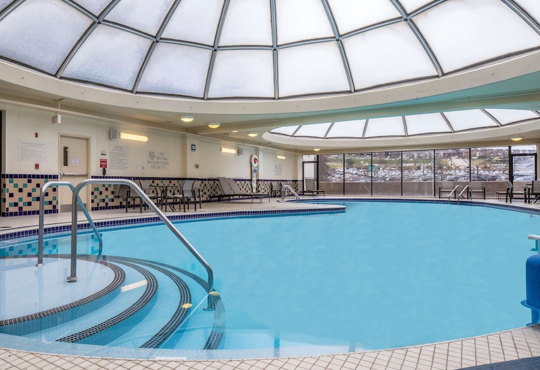 DoubleTree by Hilton Hotel & Suites Pittsburgh Downtown, Pittsburgh, Piscine