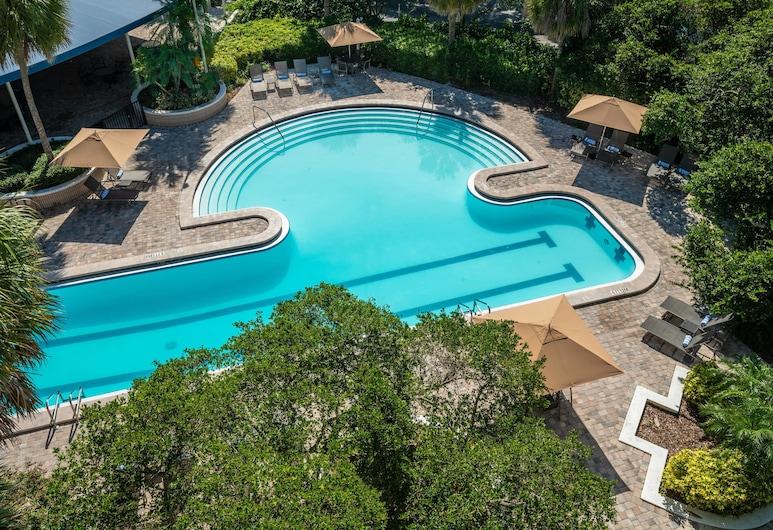 Sheraton Tampa Brandon Hotel, Tampa, Habitación tradicional, 1 cama de matrimonio grande, balcón, Habitación