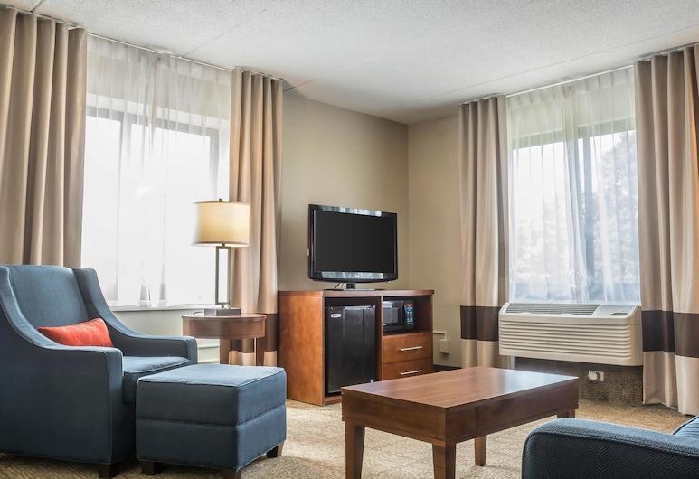 波因特凱富飯店, 尼加拉瀑布, 套房, 多張床, 無障礙, 非吸煙房 (Upgrade), 客房