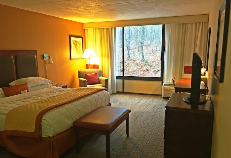 Wyndham Garden Pittsburgh Airport, Pittsburgh, Standard Room, 1 King Bed, Non Smoking, Guest Room
