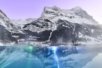 Nuotrauka: Hotel Spinne, Grindelwald