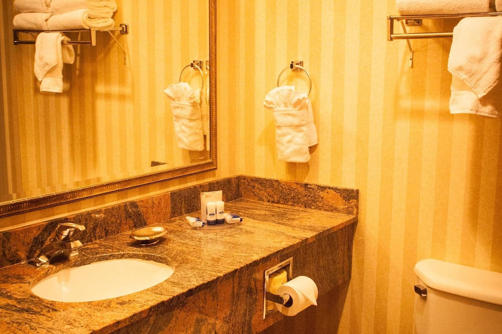 Standard Room, 1 King Bed, Accessible, Non Smoking (Walk-in Shower) - Bathroom