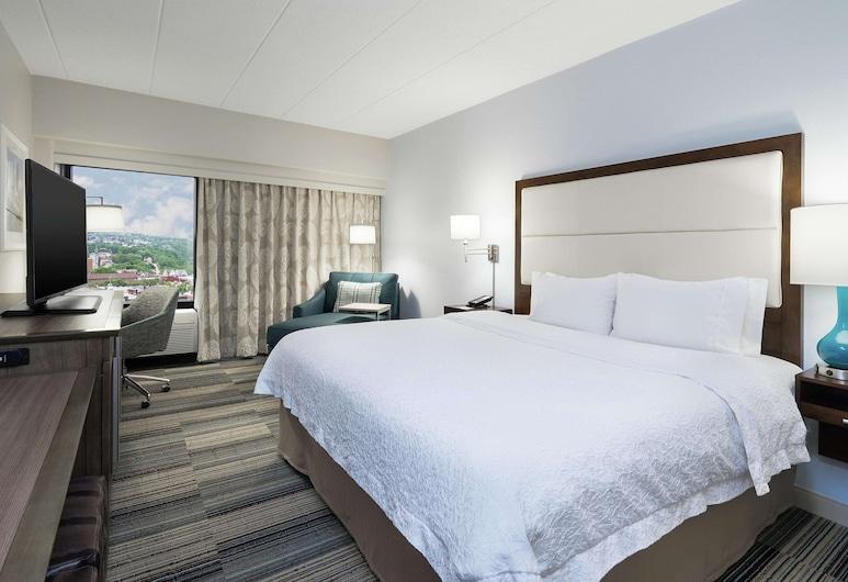 Hampton Inn Pittsburgh University/Medical Center, Pittsburgh, Standardna soba, 1 king size krevet, Dnevni boravak