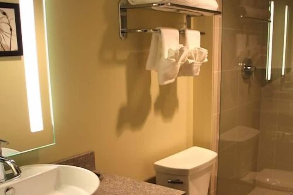 Classic Room, 1 King Bed - Bathroom