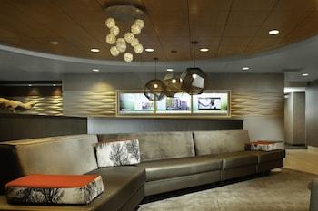 Image de SpringHill Suites Cincinnati North/Forest Park à Cincinnati