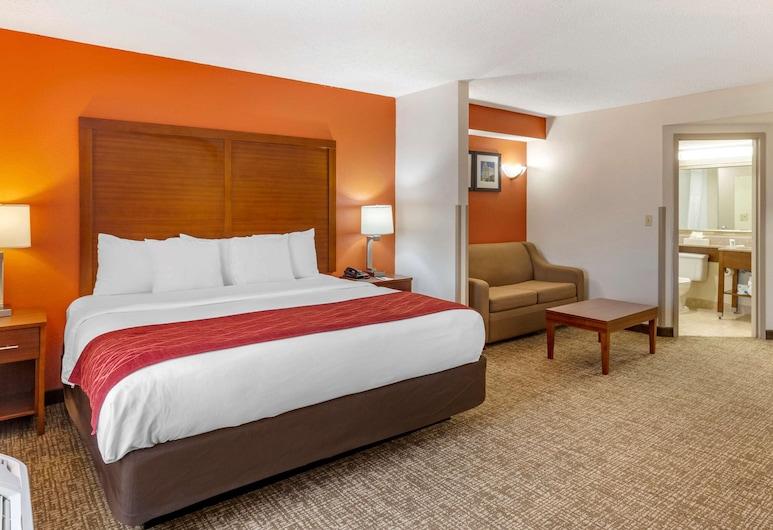 Comfort Inn Greensboro - Kernersville, Greensboro, Deluxe Suite, 1 King Bed, Non Smoking, Guest Room
