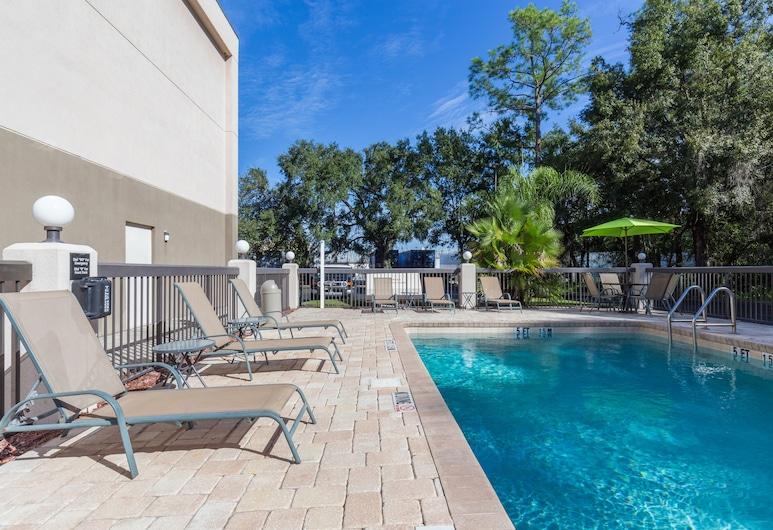 布蘭頓中央酒店 - IHG 酒店, 坦帕, 室外泳池