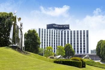 Picture of Narita View Hotel in Narita