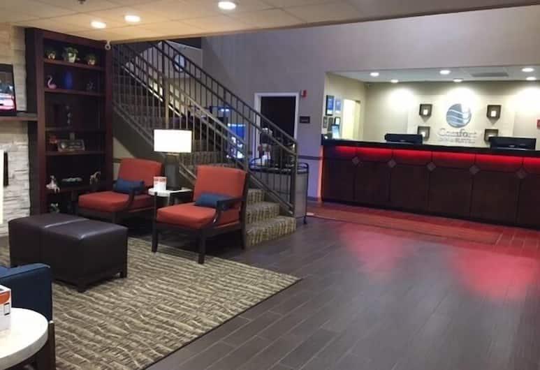 Comfort Inn & Suites Peachtree Corners, Norcross, Fuajee