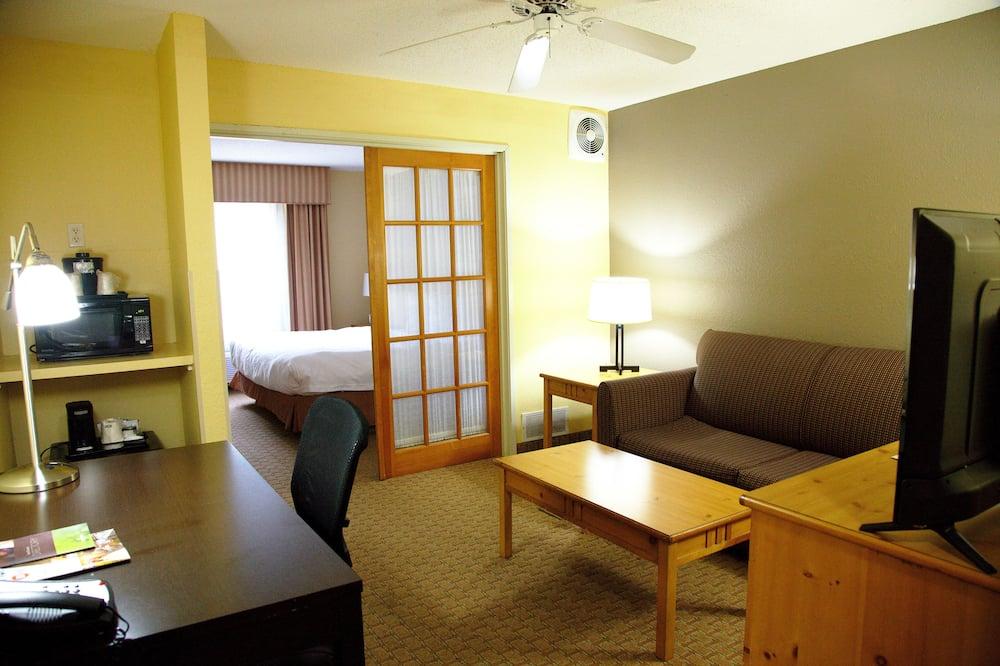 Numeris, 1 labai didelė dvigulė lova, Nerūkantiesiems - Svetainės zona