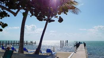 Slika: Pines & Palms Resort ‒ Islamorada