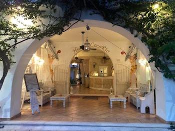 플라야 델 카르멘의 호텔 코코 리오 사진