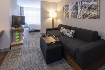 Picture of SpringHill Suites by Marriott Rochester-Mayo Clinic/St Marys in Rochester