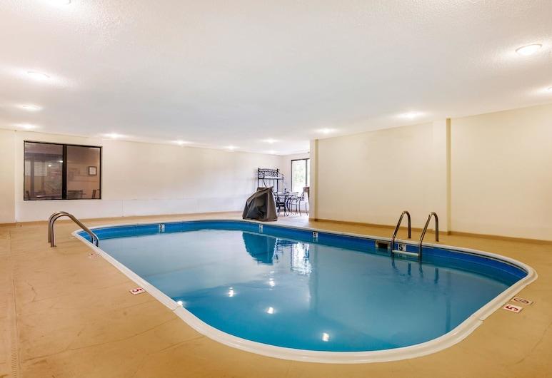 Comfort Suites Lansing, לאנסינג, בריכה