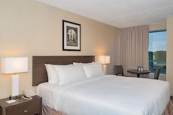 尼加拉瀑布尼亞加拉瀑布朗迪斯巷溫德姆戴斯飯店的相片