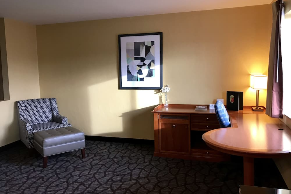 Suite, 1 King Bed, Non Smoking (One-Bedroom) - Living Area