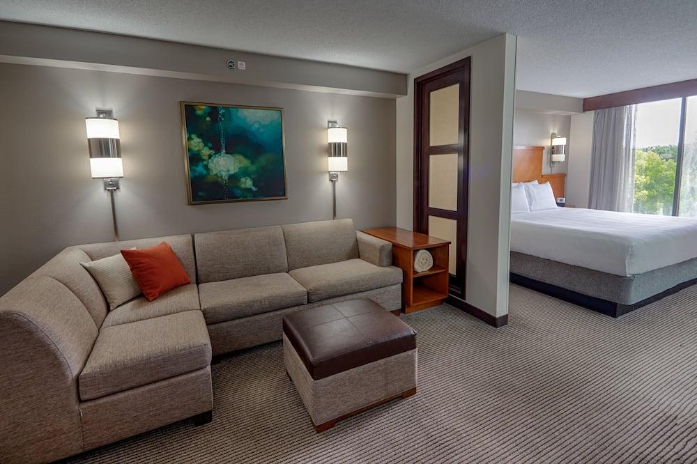 Habitación estándar, 1 cama de matrimonio grande - Sala de estar