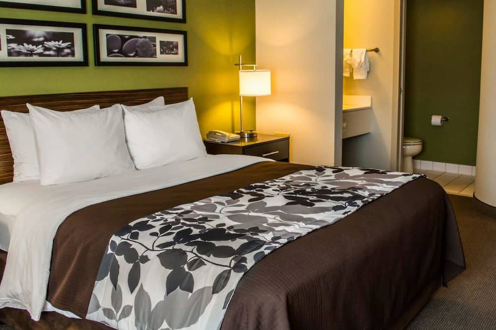 Room, 1 King Bed, Accessible, Non Smoking (Pet Friendly) - Bathroom