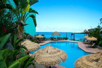 St. Thomas — zdjęcie hotelu Emerald Beach Resort