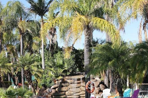 天鵝山渡假村/