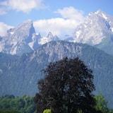 Fjallasýn