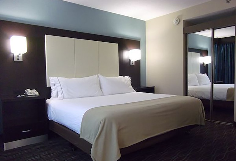 Holiday Inn Express Boise - University Area, Boise, Room, 1 King Bed, Accessible, Non Smoking (Hearing, Mobility, Bathtub), Guest Room
