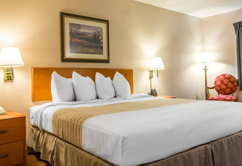 Econo Lodge Inn & Suites at Fort Benning, Columbus, Standard Room, 1 King Bed, Smoking, Guest Room
