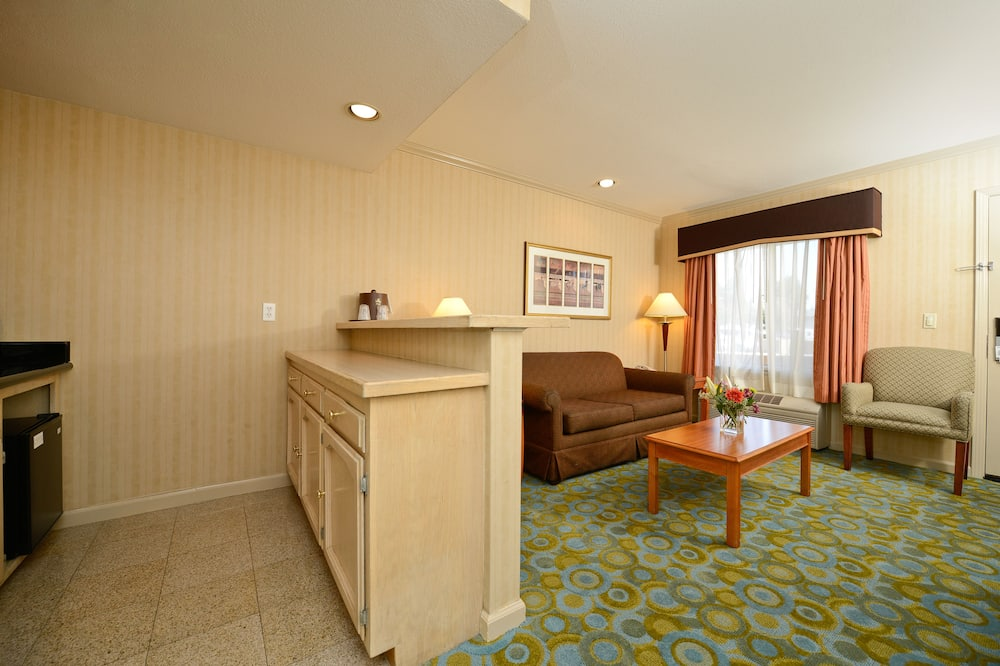 Suite, 1 King Bed, Non Smoking, Jetted Tub - Living Area