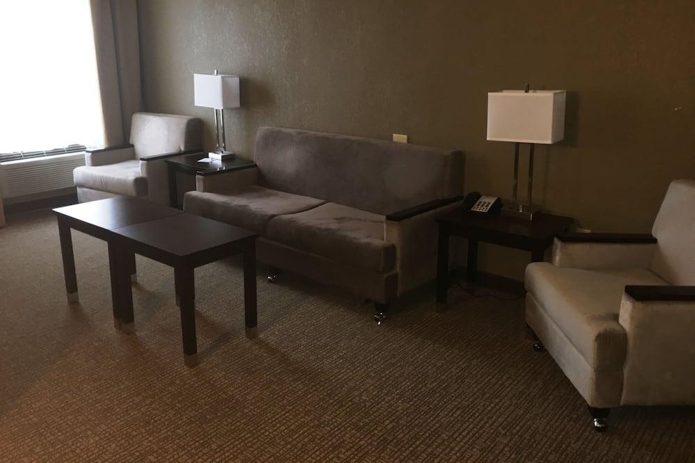 Phòng Suite, 2 giường cỡ queen, Không hút thuốc - Phòng khách